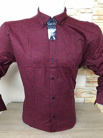 Чоловіча сорочка кашемір X-Port, фото 2
