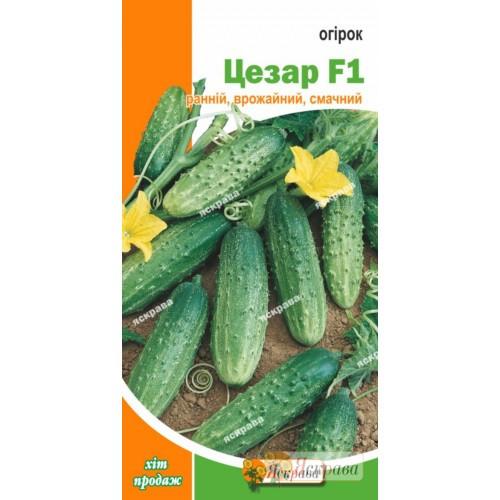 Семена огурца пч. Цезарь , 0.5 гр