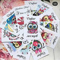 Карточки для фотосесий от 0- до 1 года