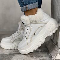 Теплые-зимние кроссовки женские (Ботинки) Buffalo МЕХ (белые) Top replic