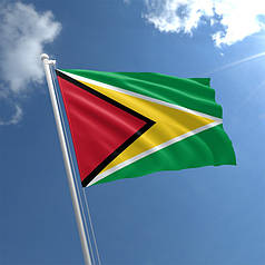 Флаг Гайаны Standart (1,5х1 м)