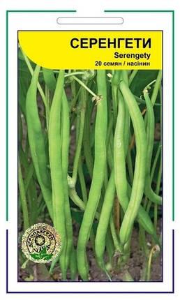 Семена Фасоль спаржевая Серенгети  100 сем Syngenta 2186, фото 2