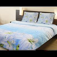 Постельное белье ТЕП  двухспальное Флорида, фото 1