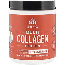 Dr. Axe / Ancient Nutrition, купити протеїн з колагеном декількох типів, 459 г (1,01 фунта)