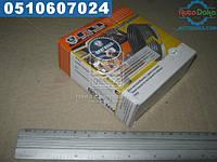 ⭐⭐⭐⭐⭐ Кольца поршневые 92,5 Мотор Комплект 2410,3302 (бренд  ГАЗ)  ДМ.4061-1000100-01АР