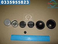 ⭐⭐⭐⭐⭐ Ремкомплект цилиндра тормозного заднего ГАЗ 53,3307 (РТИ и поршня,полный)  4301-3502040