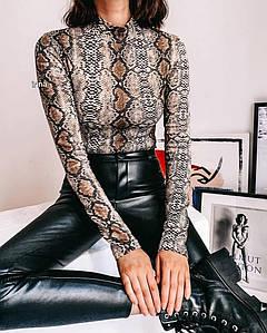 Боди женское в модном принте