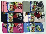 "Колготки дитячі бавовна Шугуан ""Angry Birds"" ріст 98-104, фото 4"