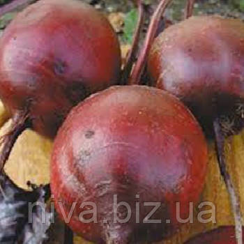 Червона Куля насіння буряка столового округлого раннього 95-105 днів Semenaoptom 50 г