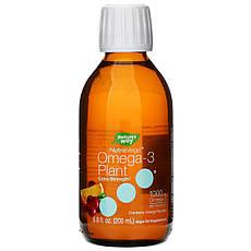 Ascenta, NutraVege, Омега-3, экстрасила, смак журавлини і апельсина, 1000 мг, 6,8 ж. унц. 200 мл, офіційний сайт