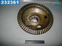 Шестерня ведомая (производство  МТЗ)  72-2308062