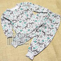 Тёплая зимняя р 98 (92-98) 1,5-2 года детская пижама для мальчика с начёсом зима на флисе байке 5096 Зеленый