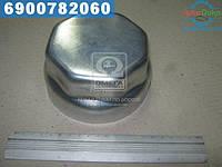 ⭐⭐⭐⭐⭐ Крышка М125*2 ступицы BPW (производство  Axut)  SB060140
