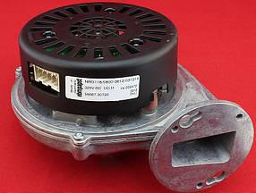 Вентилятор на конденсационный газовый котел Ariston Clas, Genus EVO Premium, Egis Premium (60001869)