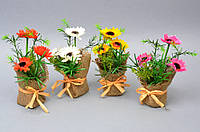 Цветы в вазоне Ромашки - 209168