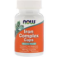 Now Foods, Iron Complex Caps, 100 Veg Capsules