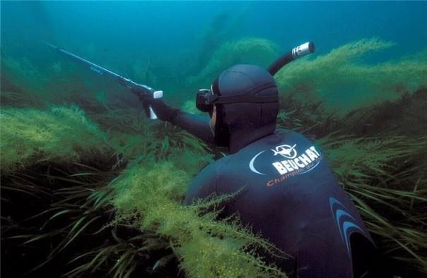 снаряжение подводное купить