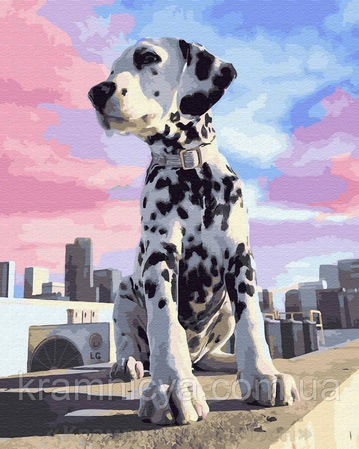Картина по номерам Brushme 40х50 Далматинец в городе (GX32310)