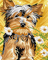 "Картина по номерам. Brushme ""Милая собачка"" GX30040"