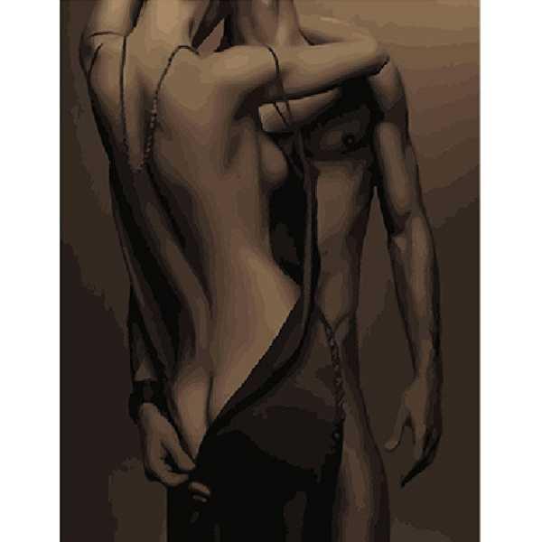 "Картина по номерам. Brushme "" Жаркая страсть "" GX24601"