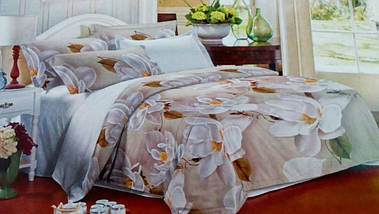Комплект постельного белья от украинского производителя Polycotton Двуспальный T-90916, фото 3