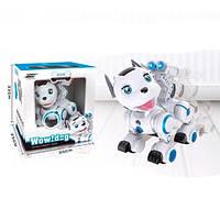 Робот пес игрушка для мальчика на пульте интерактивная  K10, 24 см, р/у