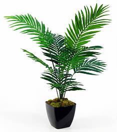 Для зелених рослин