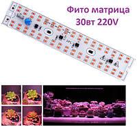 Светодиодная led фито матрица, светильник полного спектра 30вт