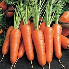Морковь Абако F1 1 гр Seminis 2068