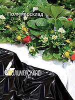 Черно белая пленка для клубники