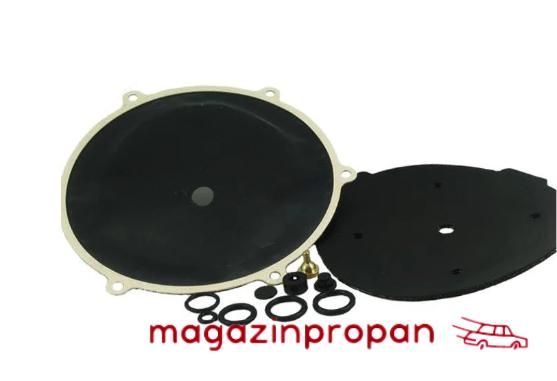 Ремкомплект для редуктора Tartarini G79 (электронный), фото 2