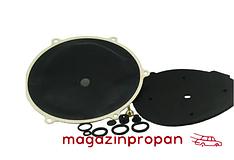 Ремкомплект для редуктора Tartarini G79 (электронный)