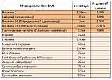 BRYT (Брит) Rain International. Ноотроп для улучшения работы головного мозга и ЦНС. Сделано в США, фото 2
