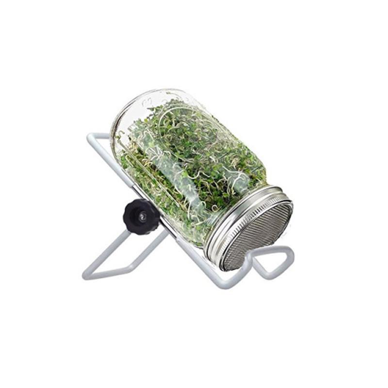 Банка спраутер для проращивания семян Ball Mason Jar