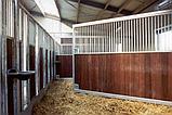Денники для лошадей трансформеры, фото 4