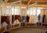 Денники для лошадей трансформеры, фото 7