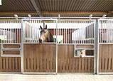 Денники для лошадей трансформеры, фото 8