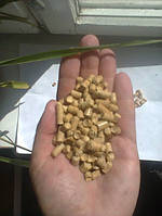 Holzpellets 6 mm (weißen) 0,3% asche in Big-Bags Düsseldorf