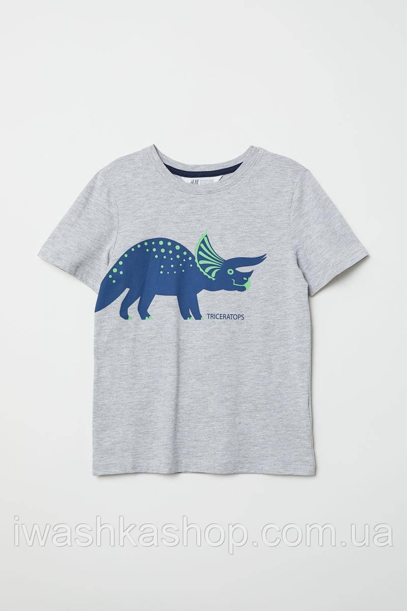 Серая футболка с динозавром для мальчиков 2 - 4 лет, р. 98 - 104, H&M