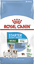 Сухий корм для цуценят малих порід Royal Canin Mini Starter Mother and Babydog 3 кг