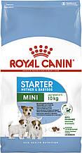 Сухий корм для цуценят малих порід Royal Canin Mini Starter Mother and Babydog 8,5 кг
