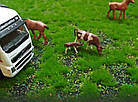 Килимок, імітація трави для макетів 30х30 см, фото 4