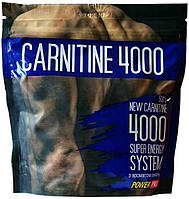 Carnitine 4000 Power Pro (500 гр.)