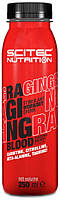 Raging Blood Scitec Nutrition (250 мл.)