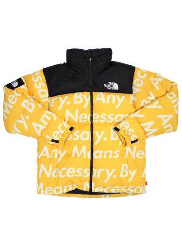 Пуховик Supreme × TNF By Any Means Necessary