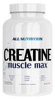 Creatine Muscle Max All Nutrition (250 гр.)