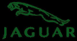 Дефлекторы окон Jaguar