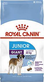 Сухий корм для молодих собак великих порід Royal Canin Giant Junior 15 кг