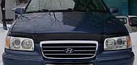 Купить Hyundai Trajet с 1999-2008 г.в. дефлектор капота (мухобойка) Vip Tuning