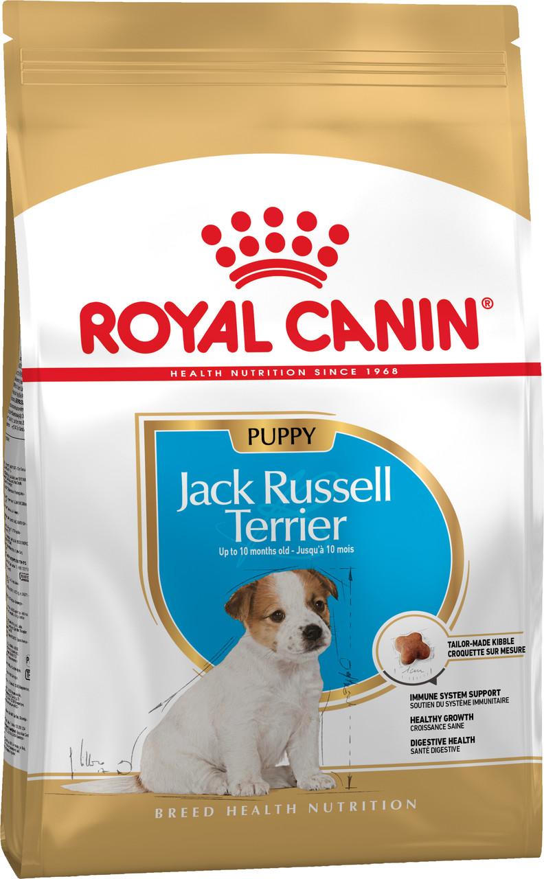 Сухой корм для щенков Royal Canin Jack Russel Terrier Puppy породы Джек рассел терьер 500 г